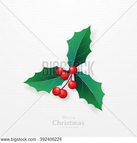Christmas And New Year Celebration Symbol. Realistic Twig Of Holly With Leaves And Red Berries. Chri