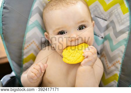 A Portrait Of Happy Young Baby Girl In High Chair Eat Cookie