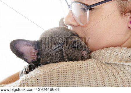 Black French Bulldog Puppy Sleep Over A White Background.