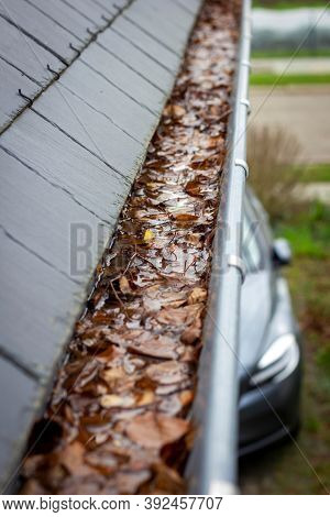 A Portrait Of A Gutter Full Of Autumn Leaves And Water Next To A Slate Roof. The Gutter Is Clogged A