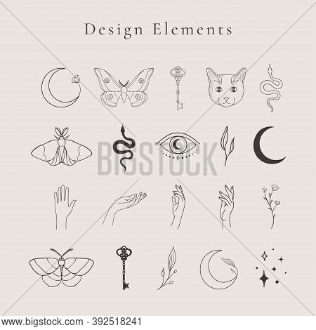 Collection Of Vector Abstract Spiritual Line Drawing Logo Design Elements, Decorative Illustrations