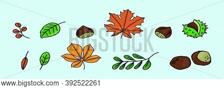 Aesculus. Buckeye. Horse Chestnut. Chestnut. Medical Plant. Vector Illustration With Various Models.