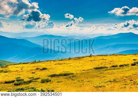 Blue Mountains Landscape