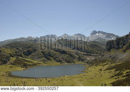 Landscape Showing Covadonga Lakes In Picos De Europa In Spain