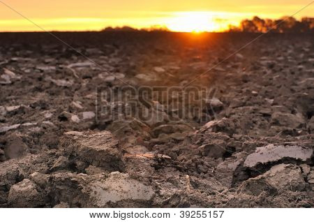 Agricultural Land At Twilight