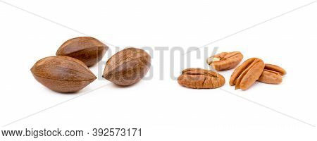 Fresh Pecan Nuts Isolated On A White Background