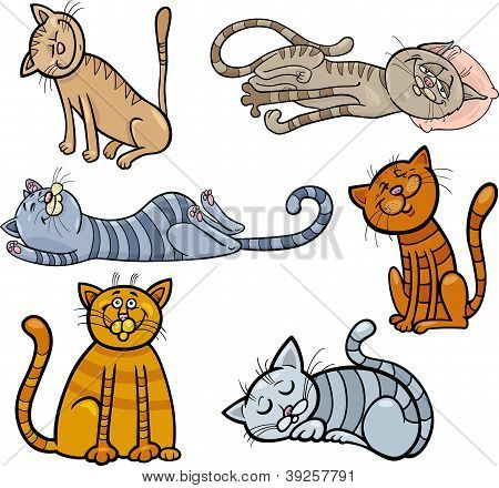 poster of Cartoon Illustration of Happy and Sleepy Cats or Kittens Set