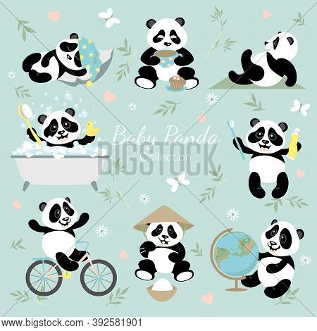 Baby Panda Collection. A Set With Little Funny Pandas. The Panda Studies, Rides A Bike, Brushes His