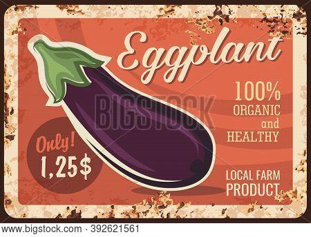 Eggplant Vegetable Metal Plate Rusty, Farm Food Products, Vector Retro Poster. Vegetables Market Pri