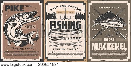 Fishing Club And Tackle Shop Poster. Northern Pike With Open Maw, Sea Or River Eel And Atlantic Hors