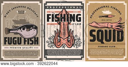 Seafood Delicacy And Squid Fishing Posters. Fugu Fish And Fresh Squid, Corals And Boat, Squid Bait A