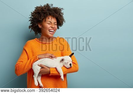Horizontal View Of Overjoyed Dark Skinned Woman Laughs Sincerely, Teases Little Puppy With Smooth Wh