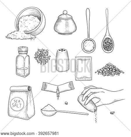 Drawn Salt. Eating Natural Ingredients For Preparing Food Sea Crystal Salt In Packages Vector Illust