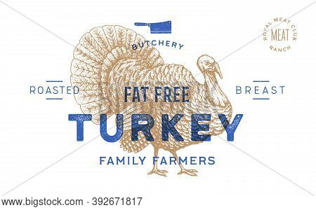 Turkey. Template Label. Vintage Retro Print, Tag, Label With Turkey Drawing, Engraved Old School Sty