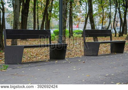 Тwo Empty Benches In The Autumn Park