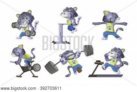 Collection Of Little Snow Leopard Goes In For Sports. Cute Leopard Lifts Dumbbells, Barbell, Runs On