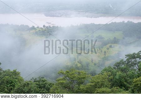 Cliff Has Evergreen Forest, Fog Covered In The Morning, Copy Space.