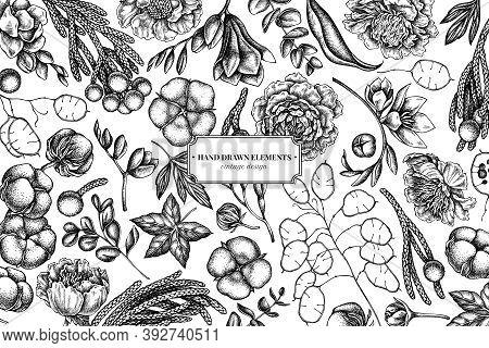 Floral Design With Black And White Ficus, Eucalyptus, Peony, Cotton, Freesia, Brunia Stock Illustrat