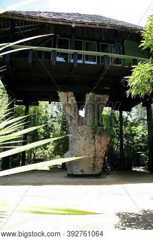 Nova Vicosa, Bahia / Brazil - March 2, 2008: Artwork By Frans Krajcberg, Artist And Environmentalist
