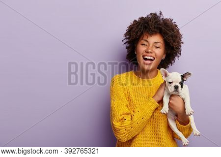 Inspired Positive Dark Skinned Woman Enjoys Pets Company, Teases Small Dog Puppy, Wears Casual Jumpe
