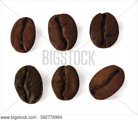 Realistic Detailed 3d Brown Coffee Beans Set Symbol Of Drink With Caffeine Espresso Or Cappuccino. V