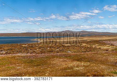Falkland Islands, Uk - December 15, 2008: Wide Windswept Bare Landscape Of Dry Land With A Lot Of No