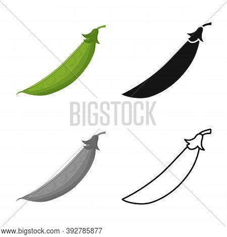 Vector Design Of Pod And Peas Icon. Graphic Of Pod And Legume Vector Icon For Stock.