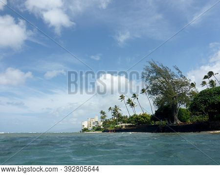 Shallow Ocean Waters Off Of At Leahi Beach Park Seawall Wall With Coconut And Other Trees Along The