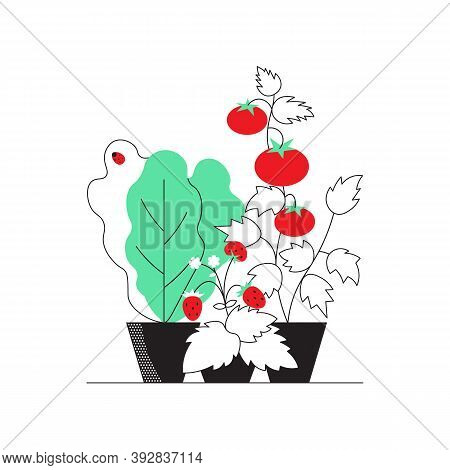 Kitchen Garden Superfood For Yourself And Self-sufficiency In Simple Minimal Outline Design Isolated