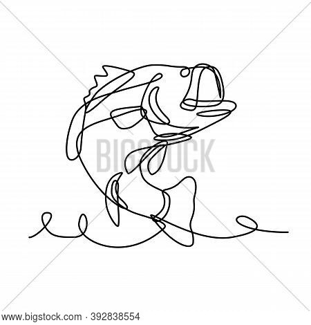 Continuous Line Drawing Illustration Of A Largemouth Bass, A Species Of Black Bass And Carnivorous F