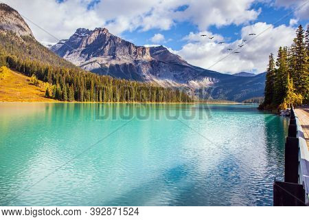 Scenic gorgeous Emerald  lake. Rocky Mountains of Canada. Mountain peaks surround the lake with azure water. Flock of migratory birds flying high in the sky