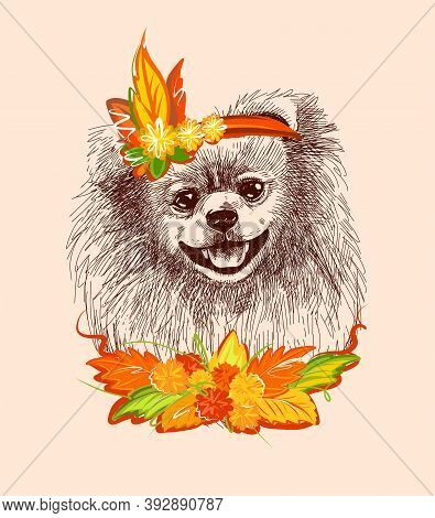 Pomeranian Dog In The Carnival Outfit Of Autumn. Print Illustration For T-shirts, Postcards, Etc. A