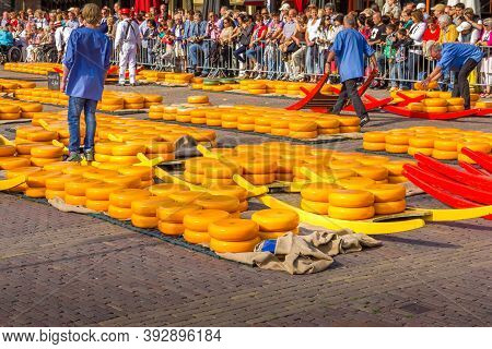 Alkmaar, The Netherlands - 7 September, 2012: Carriers Walking With Many Cheeses In The Famous Dutch
