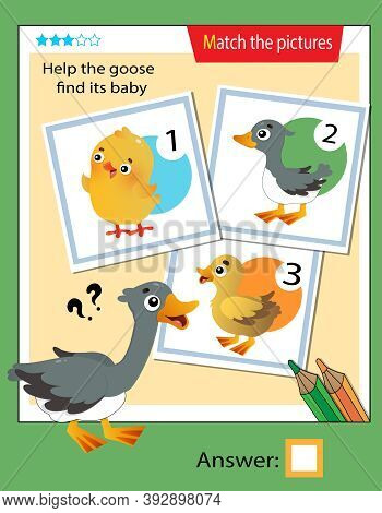 Matching Game, Education Game For Children. Puzzle For Kids. Match The Right Object. Help The Goose