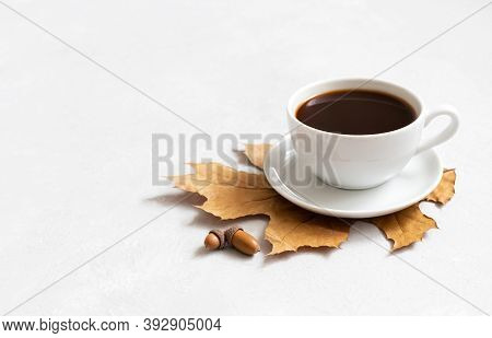 Coffee In A White Cup, Acorns And Dry Leaves. Acorn Coffee On A White Background. Coffee Substitute