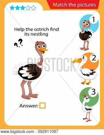 Matching Game, Education Game For Children. Puzzle For Kids. Match The Right Object. Help The Ostric