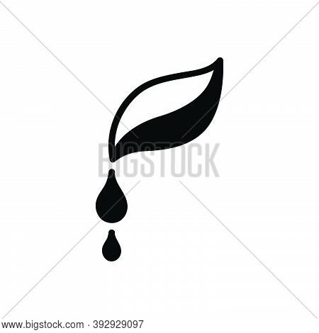 Black Solid Icon For Pure Droplet Water Clean Drinkable Fresh Beverage Nature Drop Leaf