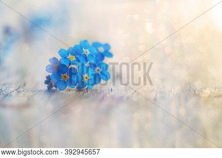 Forget-me-nots On A Wooden Surface In Lights And Bokeh Flares. Deep Blue Flowers. Beautiful Floral R