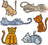 Cartoon Illustration of Happy and Sleepy Cats or Kittens Set poster