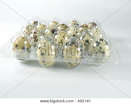 quail's eggs poster
