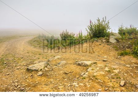 Ground Road In Fog