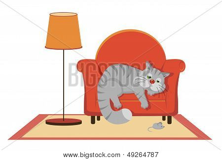 Sad Gray Cat Lying On The Couch
