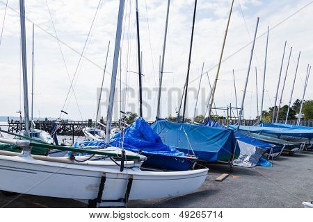 Sailboats At Ambleside Park
