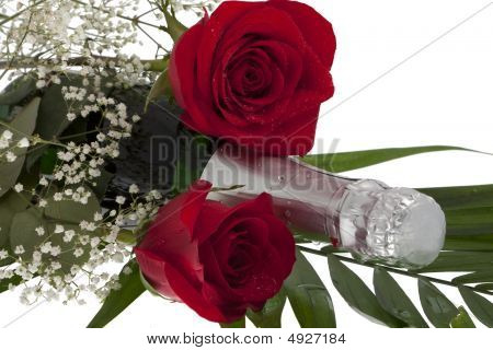 Roses With Champagne Bottle