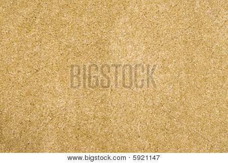 Brand New Beige Carpet