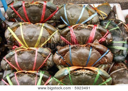 Crabs for sale at market