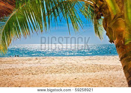 Palm trees gateway to Sokha sand beach in Sihanoukville, Cambodia.