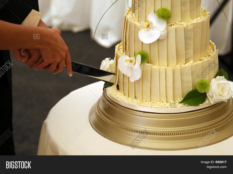 Bride Grooms Wedding Image & Photo (Free Trial) | Bigstock