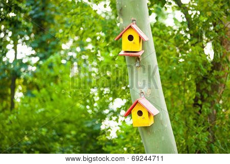Birdhouses On A Tree