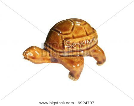Turtle - a souvenir from the Seychelles poster